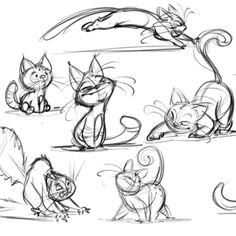 Cats!!! #cats #characterdesign #cute #Expressions #animation #animals #Wendy_Grieb #art #poses