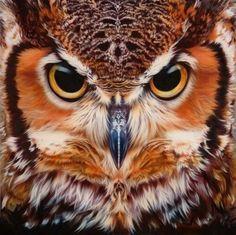 Once like a Barn Owl twice like a brown owl