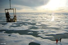 Ocean Conservancy's call to Stop Reckless Drilling after Shell's latest misstep in the Arctic.
