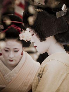 Maiko e Geisha Japanese Geisha, Japanese Kimono, Japanese Girl, Yukata, Beautiful Images, Beautiful Women, Memoirs Of A Geisha, Turning Japanese, Two Ladies