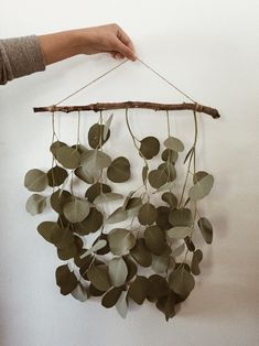 Deco Floral, Aesthetic Room Decor, Hanging Plants, Plant Decor, Diy Wall, Decoration, Diy Home Decor, Wall Decor Crafts, Home Projects
