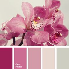 Muted violet-red and lilac-beige shades are combined with a neutral light gray. This colour solution suits well the external design of country houses, vill.