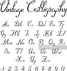 View top-quality illustrations of Vintage Calligraphic Script Font Linear Vector Handmade Calligraphy Typeface Letters Numbers Uppercase Lowercase Symbols Characters. Find premium, high-resolution illustrative art at Getty Images. Alphabet Cursif, Fonte Alphabet, Calligraphy Fonts Alphabet, Handwriting Alphabet, Hand Lettering Alphabet, Script Typeface, Font Styles Handwriting, Fancy Fonts Alphabet, Script Alphabet