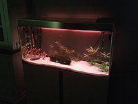 Kleurrijke aquarium led verlichting bedienbaar met afstandsbediening