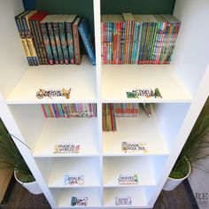 Ikea kallax shelf with Core Inspiration colorful image-rich classroom library labels