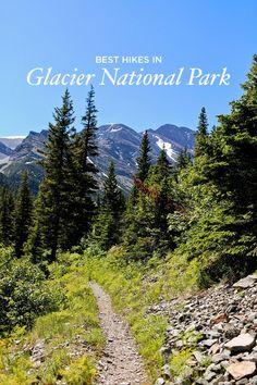 Best Hikes in Glacier National Park Montana Local Adventurer Many Glacier, Glacier Np, Yellowstone Nationalpark, Glacier National Park Montana, Glacier Montana, Us National Parks, Best Hikes, Travel Usa, Woods