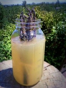 Raw Lavender Lemonade-Yummy summer treat! juice from 4 lemons  1/2 cup raw honey  3 cups filtered water  2 cups ice cubes  1 bouquet lavender, about 1 inch thick  Mix 4 ingredients in high speed blender. Drop lavender into the lemonade  allow it to steep before serving.