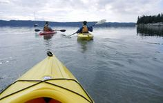 Hood Canal's protected waters afford kayakers an easygoing saltwater experience.  Check out all the fun things to do outside when you stay at Alderbrook Resort & Spa!  http://www.alderbrookresort.com/