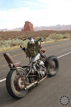 "This bike started out as a Shovelhead, then it grew into what we call In the Harley world a ""rat bike"". Moto Chopper, Chopper Motorcycle, Bobber Chopper, Motorcycle Garage, Motorcycle Camping, Motorcycle Girls, Motos Vintage, Velo Vintage, Vintage Bikes"