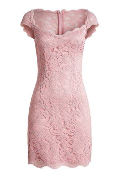 ESPRIT Collection Damen Etui Kleid aus Spitze, Mini, Einfarbig, Gr. 32, Rosa (PEACH BLOSSOM 637)