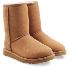 UGG Australia Classic Short Suede Boots ($180) ❤ liked on Polyvore featuring shoes, boots, ankle booties, uggs, brown, chaussures, brown suede booties, brown mid calf boots, short boots and mid calf booties