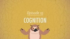Cognition: How Your Mind Can Amaze and Betray You – Psychology #15