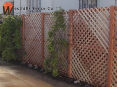 Kind of digging a simple lattice fence - easy, cheap, and can grow ivy up it easily to fully cover.