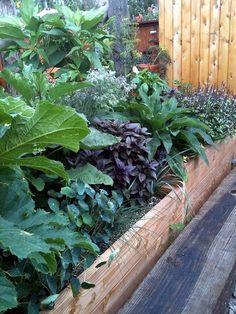 sub irrigated raised beds