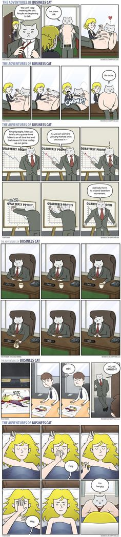 The Adventures Of Business Cat - 9GAG