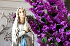 Mi amada Virgen Maria, Reina de la Paz