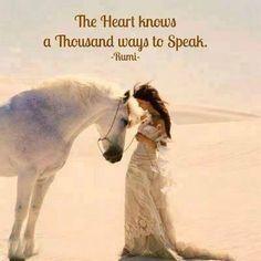 Rumi ..*
