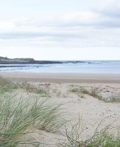 I've just experienced new Wood Sage & Sea Salt. Sunset Beach, Beach Walk, The Rainmaker, Beach Gardens, I Love The Beach, Jo Malone, England And Scotland, Lofoten, English Roses