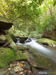 The Conasauga River Trail hikes Georgia's remote Cohutta Wilderness