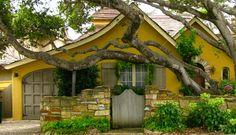 Quaint & comfortable, great tree
