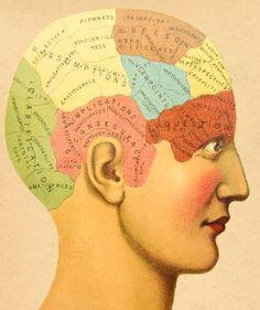The Creative Mind: Do Artists Have Unique Brains?