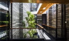 This narrow, four-story-tall family house in Vietnam packs a surprising amount of greenery within a very small space.