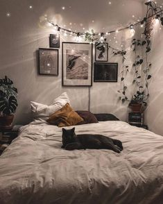 Dreamy Bohemian Master Bedroom Decorating You'll love the Ar. - Dreamy Bohemian Master Bedroom Decorating You'll love the Artificial Frosted - Cute Bedroom Ideas, Cute Room Decor, Room Ideas Bedroom, Bedroom Inspo, Bedroom Designs, Cozy Bedroom Decor, Diy Bedroom, Nature Bedroom, Wall Decor