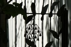 Shadows of Wind Chimes