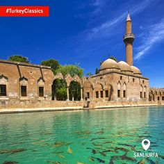 The Pool of Abraham and its sacred fish is a spot to sit, relax and admire the miracle of history. #TurkeyClassics #HomeOf #Urfa
