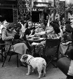 Gordon Parks, Vintage Cafe, Vintage Paris, Vintage Dog, Vintage Black, Black White Photos, Black And White Photography, Parisian Cafe, Old Paris