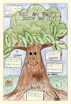 "Holding a poster contest is always a great way to celebrate and honor Arbor Day! ""Winning 2008 Arbor Day Contest Poster by James Farrell"" 