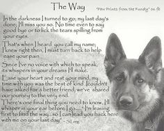 Dog Poems, Dog Quotes, Animal Quotes, Pet Loss Quotes, Poems About Dogs, Dog Sayings, Animal Signs, Animal Fun, I Love Dogs