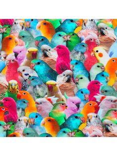 Bomuldsjersey - med søde parakitter