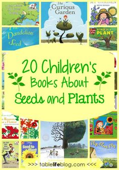 Love this supplemental reading for Exploring Creation with Botany: What to Read: 20 Children's Books About Seeds and Plants