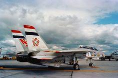 VF-124 Bi-Centennial F-14 Tomcat, N.A.S. Miramar
