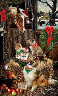Cardigan Welsh Corgi - Christmas Friends Christmas cards - by Margaret Sweeney Christmas Friends, Cowboy Christmas, Christmas Scenes, Christmas Animals, Christmas Pictures, Vintage Christmas, Christmas Cards, Holiday Cards, Christmas Holiday