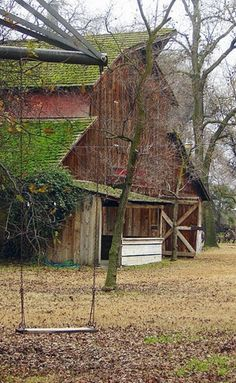 Moss covered barn in Autumn