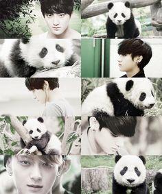 Animal edit - Panda - EXO/Tao I'm having a hard time wondering where to put this one. But we all know that Tao Oppa is OBSESSED with Pandas! Kyungsoo, Chanyeol, Exo Tao, Panda Bebe, Huang Zi Tao, Little Panda, Kim Minseok, Wattpad, Exo Members