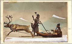 Traditional reindeer sleigh - the Sami are the People of the Reindeer!