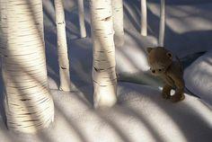 shadow spotting