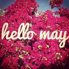 80 Hello May Quotes And Sayings To Bring In The Wonderful, colorful and warm month. Enjoy these quotes for a new month and love another great may!