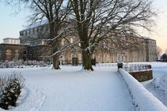 Petworth House looking radiant in the snow