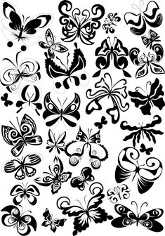 Google Image Result for http://imgboat.com/imgs/2012/07/29/-butterfly-tattoos-for-your-designs-or-tattoo-works-format-eps-tiff-94.jpg