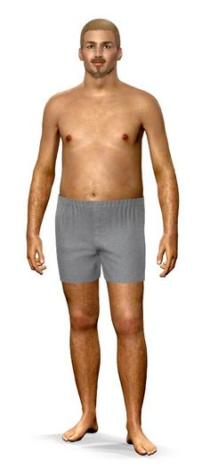 Model My Diet for Men Goal Model
