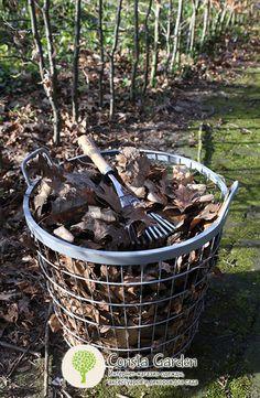 Веерные грабли малые Esschert Design.Малые ручные веерные грабли предназначены специально для  выравнивания грунта и уборки листьев, веток и другого мусора между многолетними травянистыми растениями, под кустами и деревьями, в местах с плотной посадкой растений.