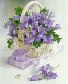 (Russia) Bouquet in basket by Marianna Lokshina. Flowers Garden, My Flower, Purple Flowers, Spring Flowers, Flower Power, Beautiful Flowers, Deco Floral, Arte Floral, Floral Design