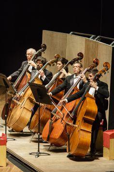 Contrabaixos da Orquestra Sinfônica Brasileira em apresentação ao lado do maestro e violinista Pinchas Zukerman.