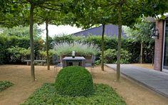 Mooi zitje in  een prachtige tuin onder dakplatanen. Geeft een echt frans landelijk gevoel