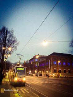 Wiener Ringstraße mit Blick auf das MAK (Museum für angewandte Kunst). #sightseeing #vienna #wien