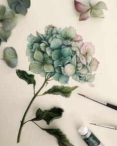 Watercolorist: @tasamajamarina #waterblog #акварель #aquarelle #painting #drawing #art #artist #artwork #painting #illustration #watercolor #aquarela